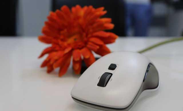 白いマウスと花