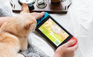 ニンテンドースイッチのゲーム画面を覗き込むネコ