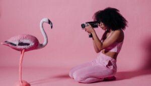 フラミンゴを撮影する女性