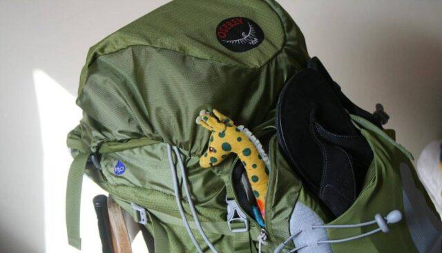 緑のリュックサック