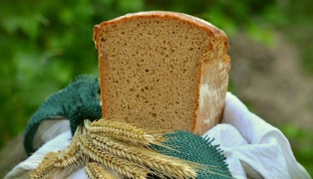 食パンと小麦
