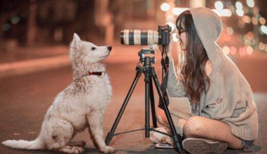 ビデオカメラにおすすめの三脚15選!運動会など、選び方、取り付け方も解説